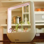 Futuristic Broto Pot for Your Plant To Grow