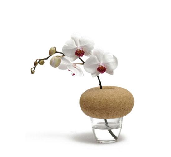 Cantine Vases