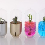 Capsule Pot: The New Paradigm Of Pot