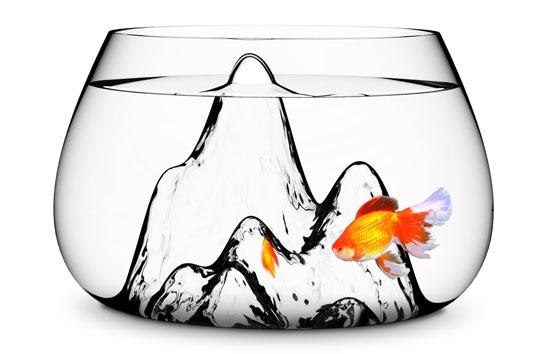 Fishcape Fishbowl