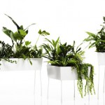 Add Some Refreshing Elegance To Your Home With The Green Pedestals