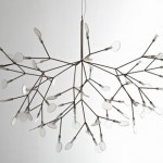 Heracleum: Your Heracleum Plant Inspired LED Lighting System