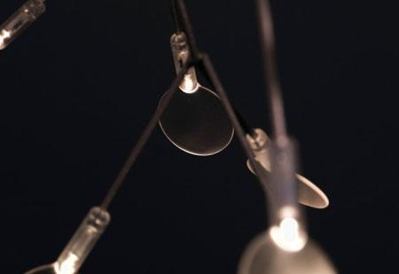 Heracleum Lamp