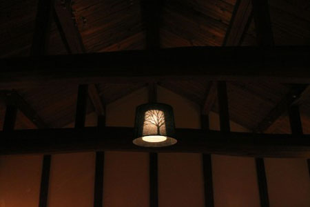 Mori Light