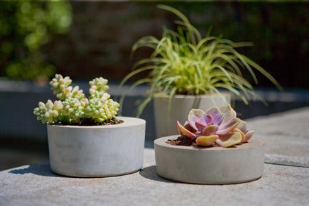 obleek concrete planter collection