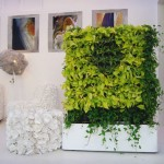 Plant Walls: Refreshing And Unique Décor For Your Home Office