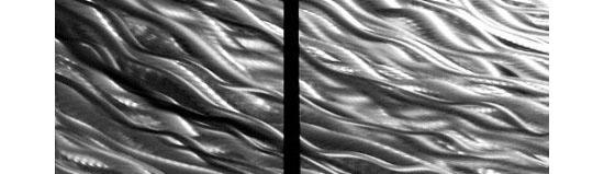Ripple Effect Modern Abstract Metal Wall Art Painting Décor Sculpture