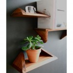 Discover A Good Angle In Your House With Stylish Shelf Stealf