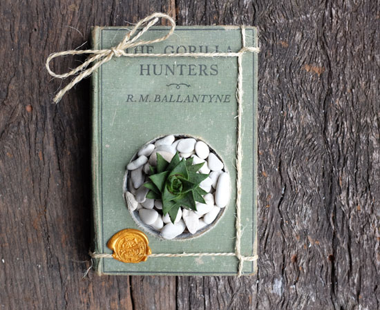Succulent Planter Book by James Grundy