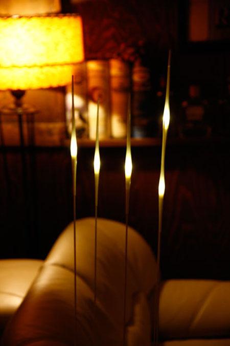 Suxuki Lamp