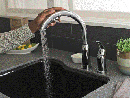unique kitchen faucet from american standard
